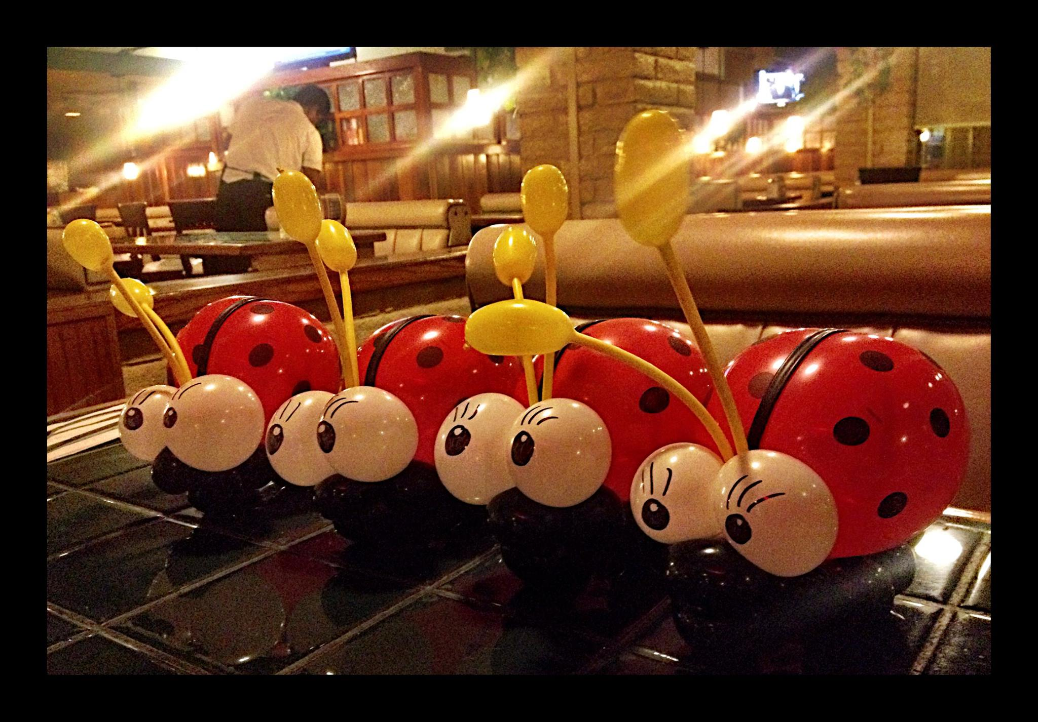 Balloon Lady Bugs.jpg