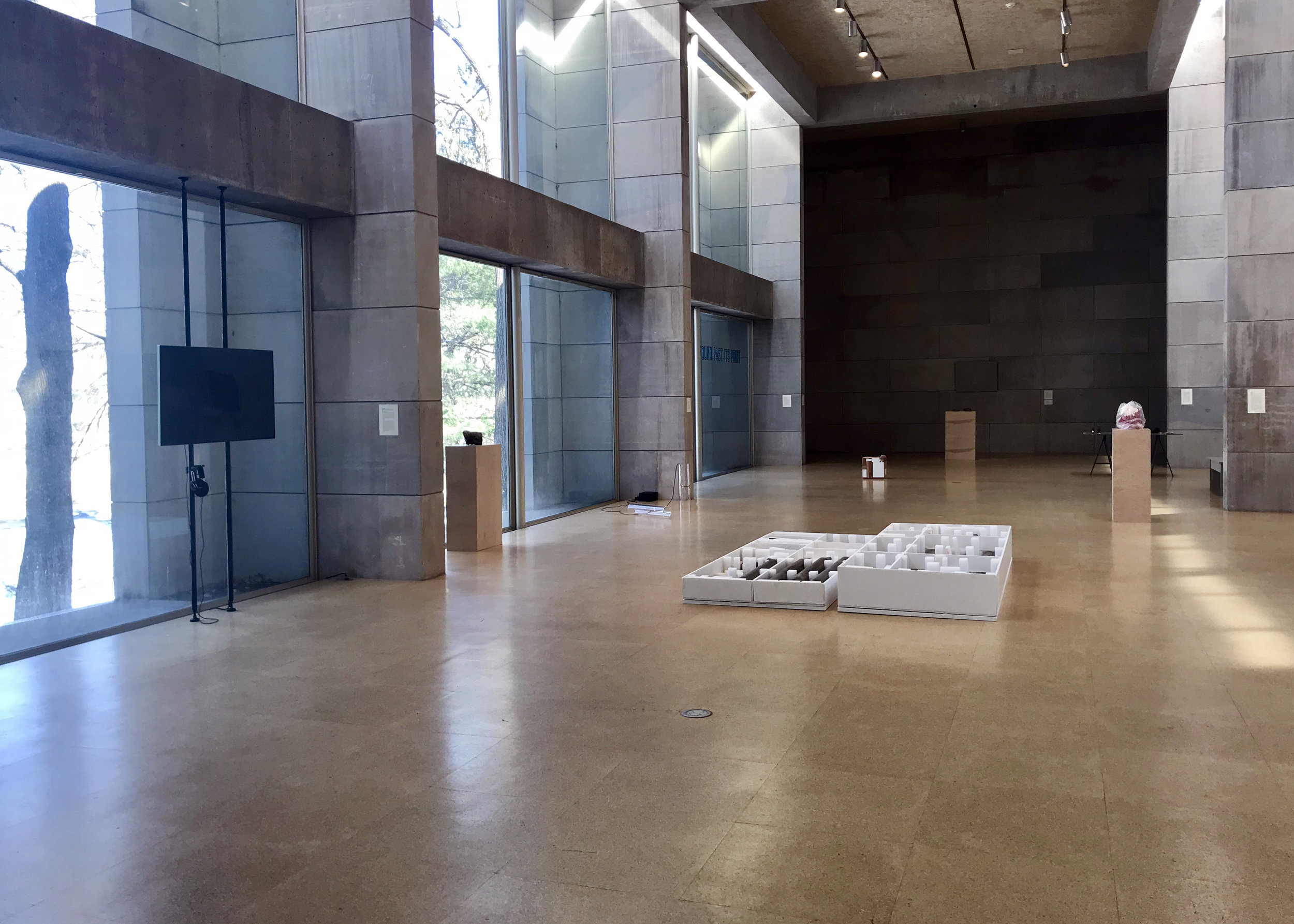 Audible Bacillus  Installation view, Zilkha Gallery, Wesleyan University. Image: J. Gleisner.