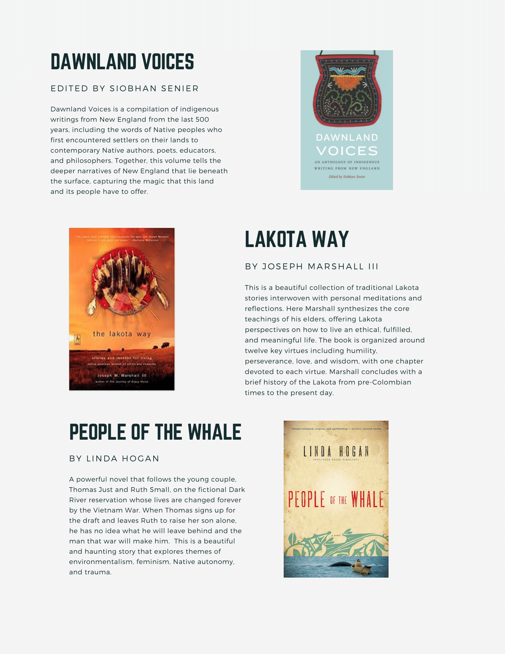 Our Voices newsletter-2.png