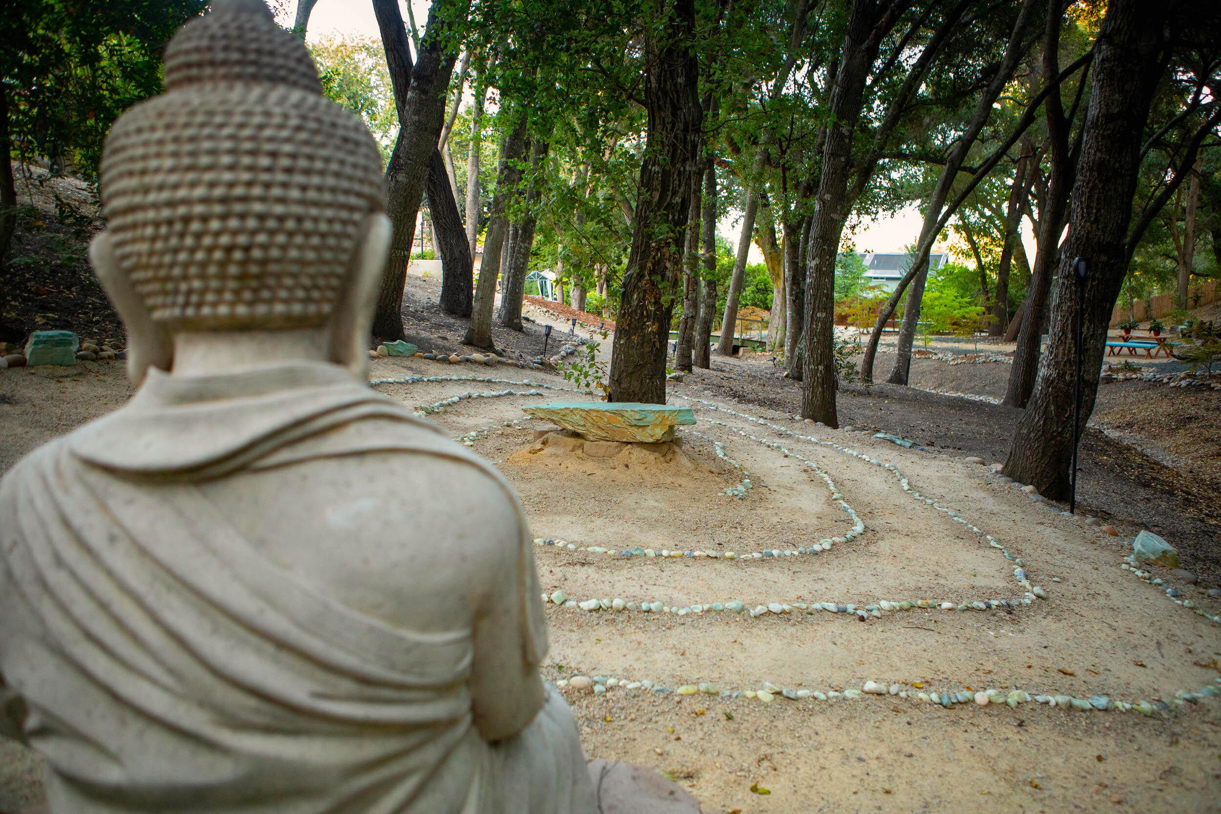 Buddha Back.jpg