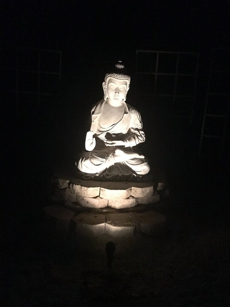 Buddha Night Front.jpg