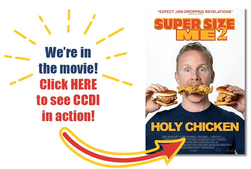 Holy Chicken for Homepage_Left2.jpg