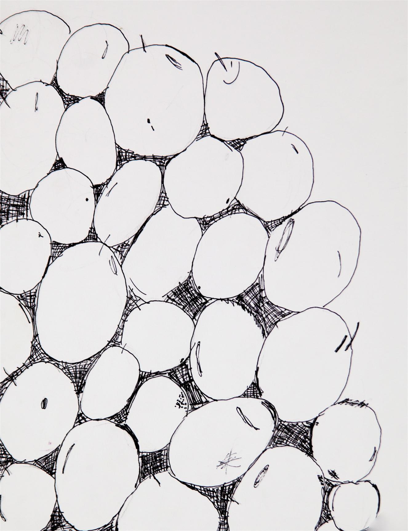 "Grade 5~ Still Life, Perspective Drawing, ""Grapes""  Pen & Ink"