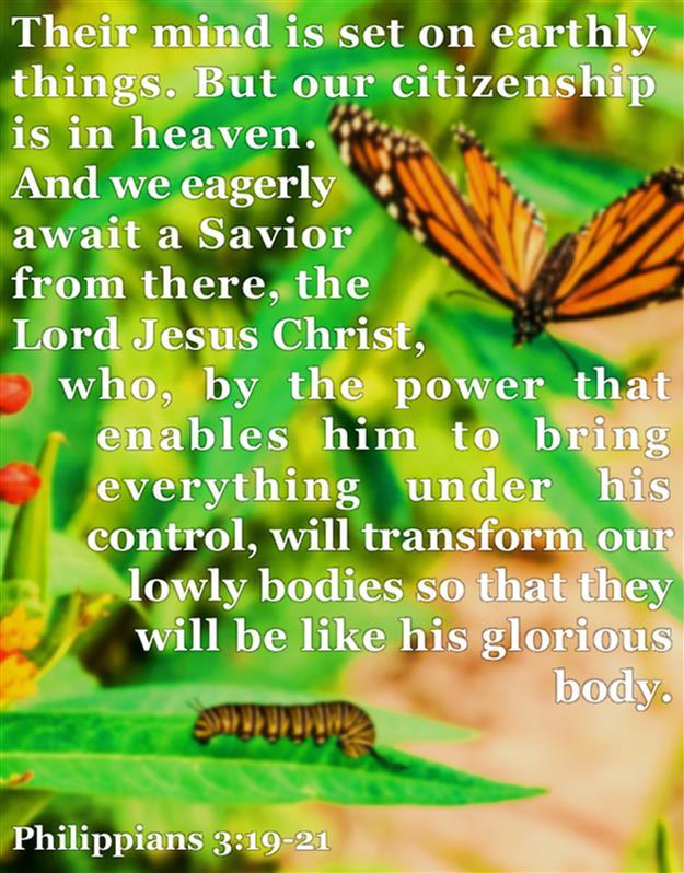 Philippians 3:19-21