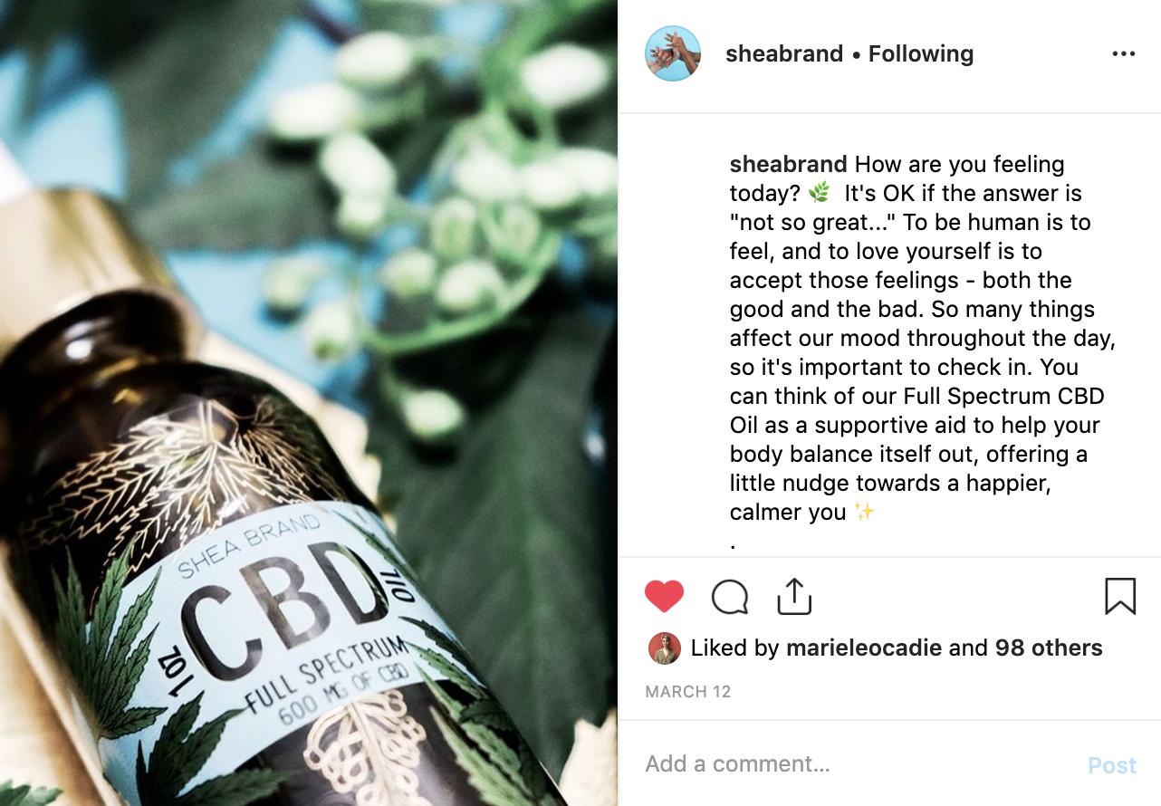 Instagram for Shea Brand 2