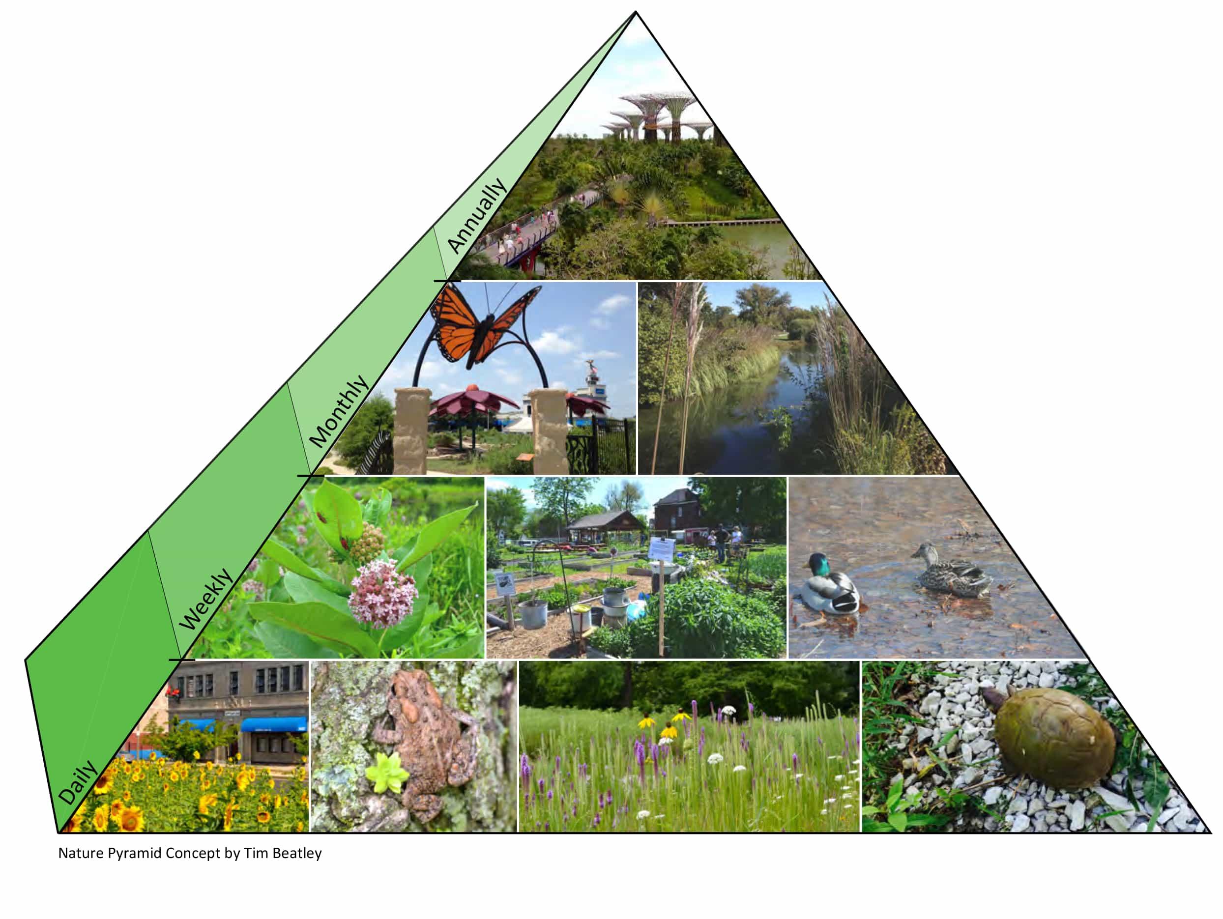 stl_naturepyramid_v2.jpg