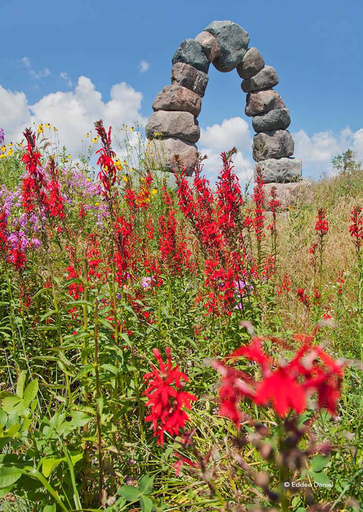 EDaniel_Rotary-Arboretum.jpg