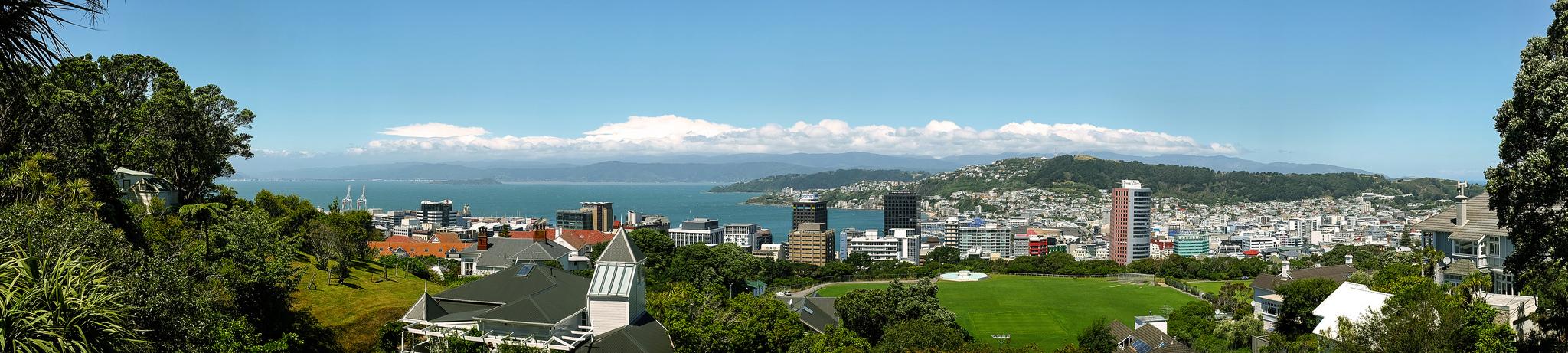 Wellingtonpano_MichaelYuen.jpg