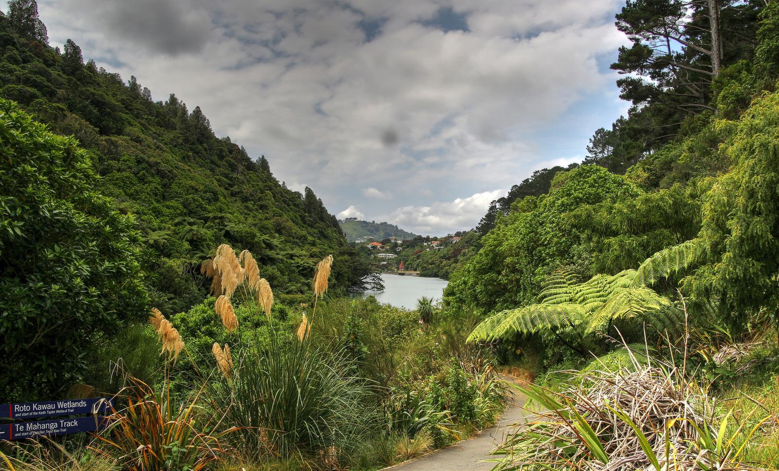 Zealandia_HowardGreenwood.jpg