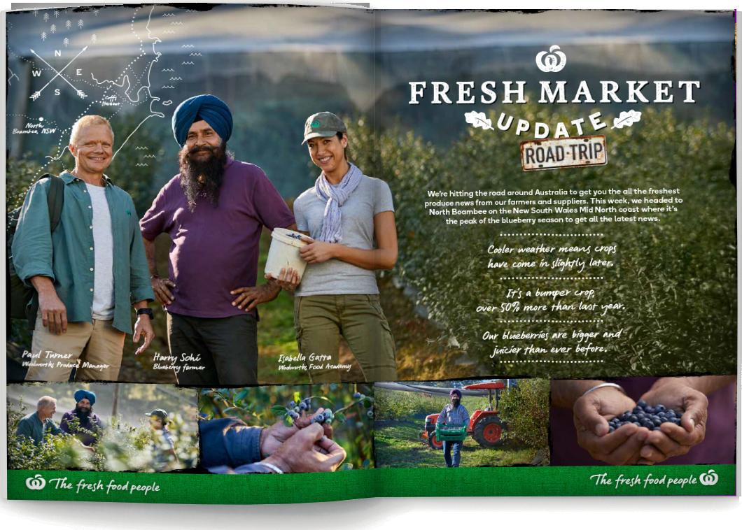 Fresh Market Update - Catalogue Blueberries