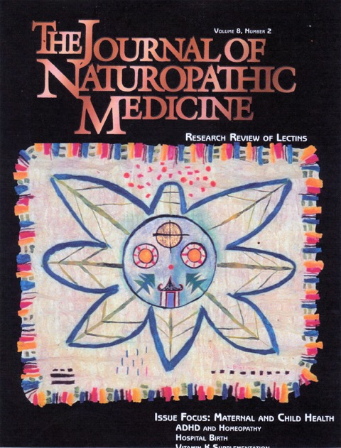 "The Journal of Naturpathic Medicine, vol 8, #2, 1998 ,   ""Lifeforce Mask""  : cover art"