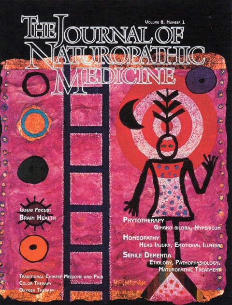 "The Journal of Naturpathic Medicine, vol 8, #1, 1998    ""Re-Enchantment""   :  cover art"