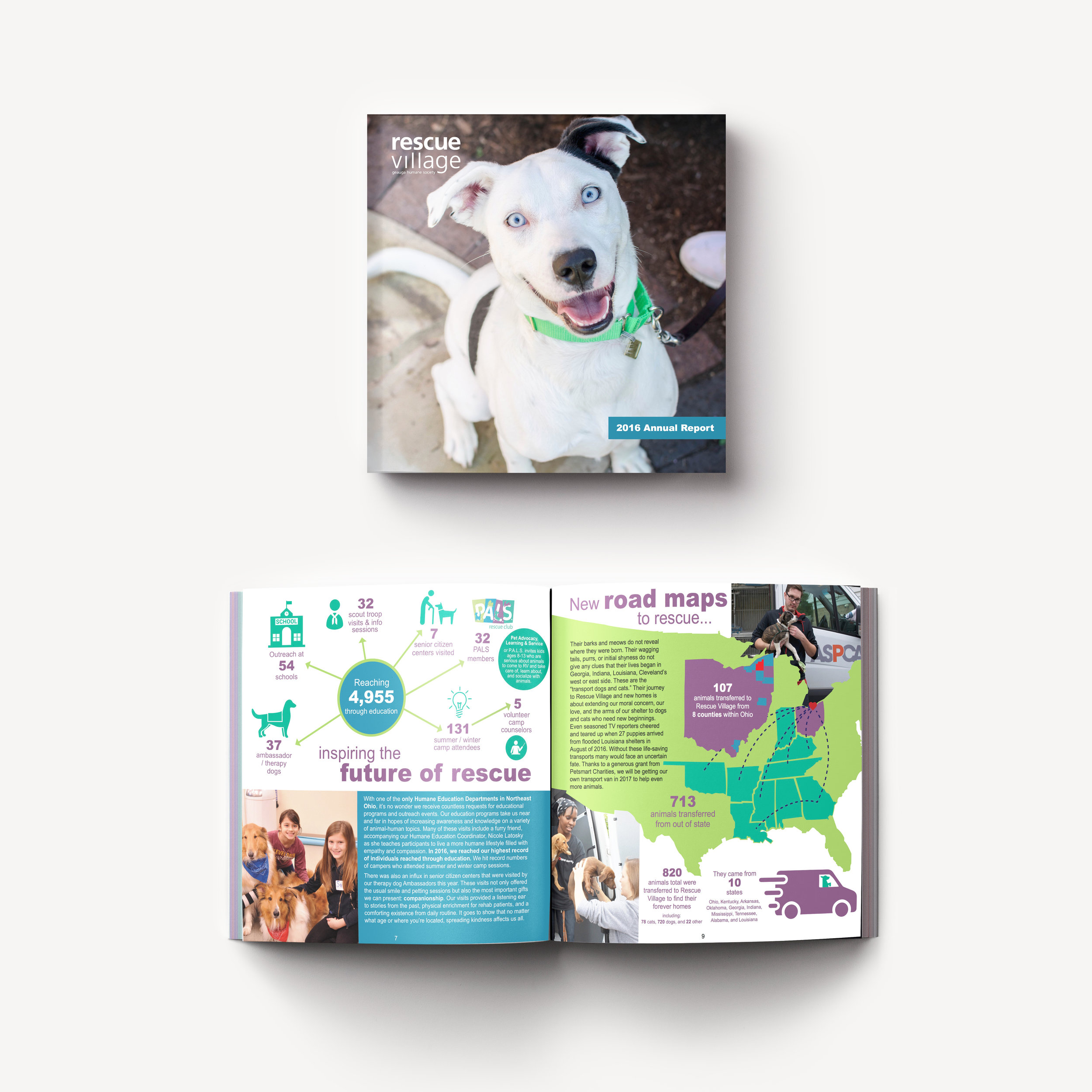 2016 Annual Report Design for Rescue Village. (Design, photography, and art direction by Leah Backo)