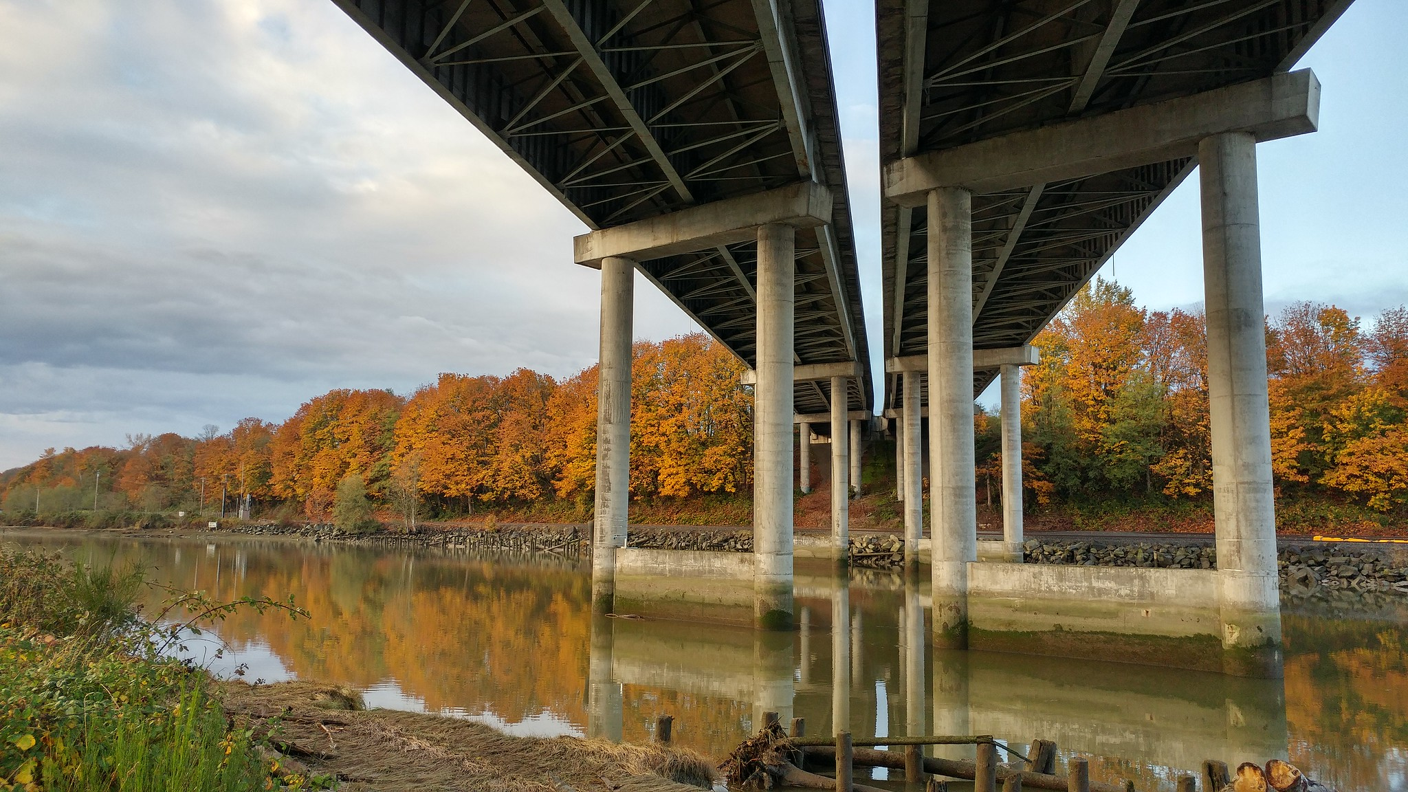 Under the viaduct at Langus Riverfront Park // Christopher Bragg