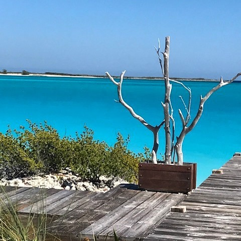 📍No edit at all! The Bahamas really do have it all📍#bahamas #thebahamas #exuma #exumabahamas #exumas #beach #beachvacation #vacation #vacay #travel #travelphotography #traveling #travelholic #sheisnotlost #wander #caribbean #island #islandgirl #islandlife #beachlife #follow #redpinit #boatlife #travelideas #traveler #ilovetravel #ilovethebeach #bestbeach #adventure