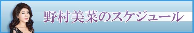野村美菜スケジュールバナー.png