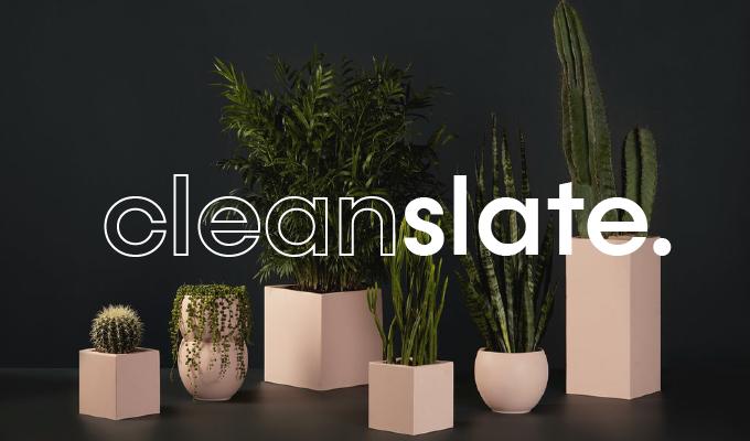 -   CLEAN SLATE Branding Kit
