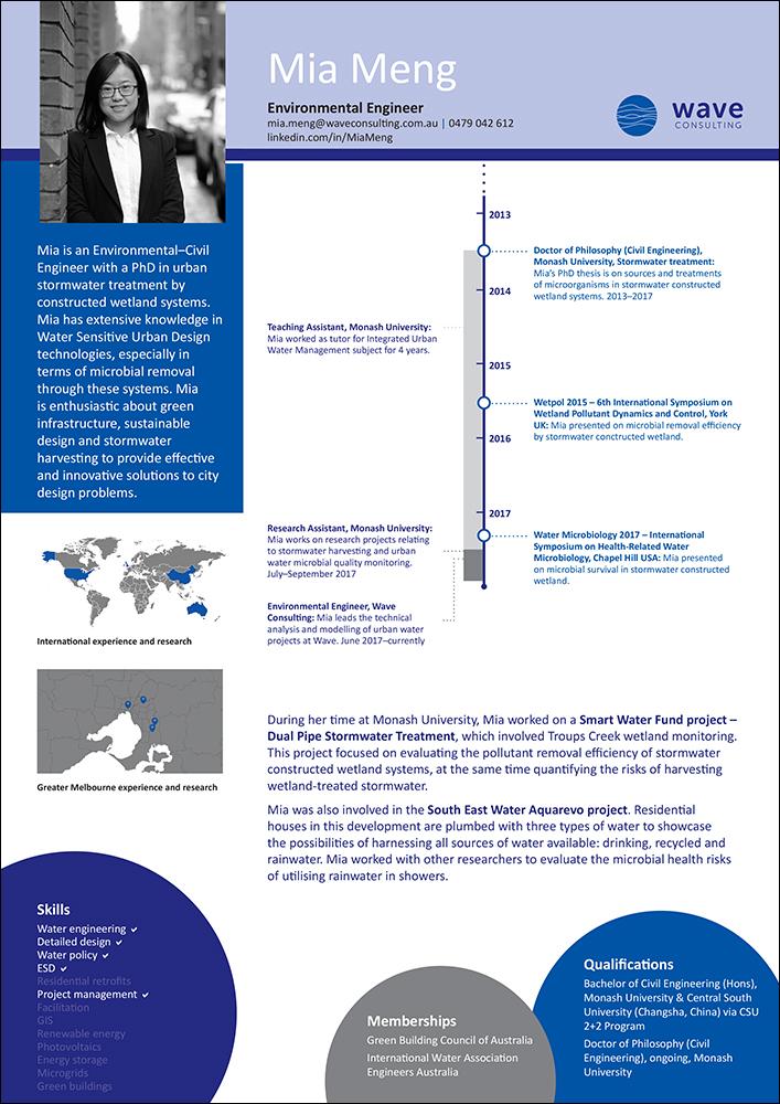 Wave-Consulting-cv-infographic-design-Mia.jpg