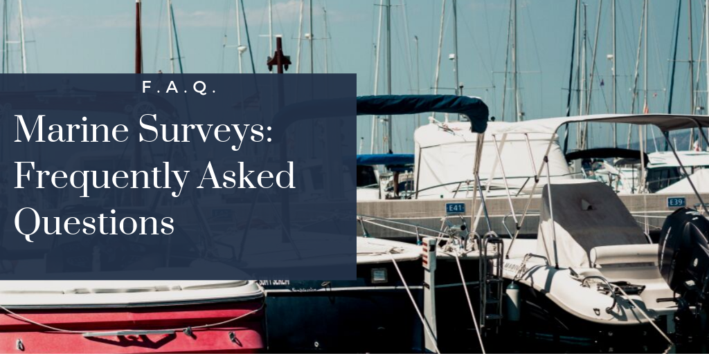 surveyfaq