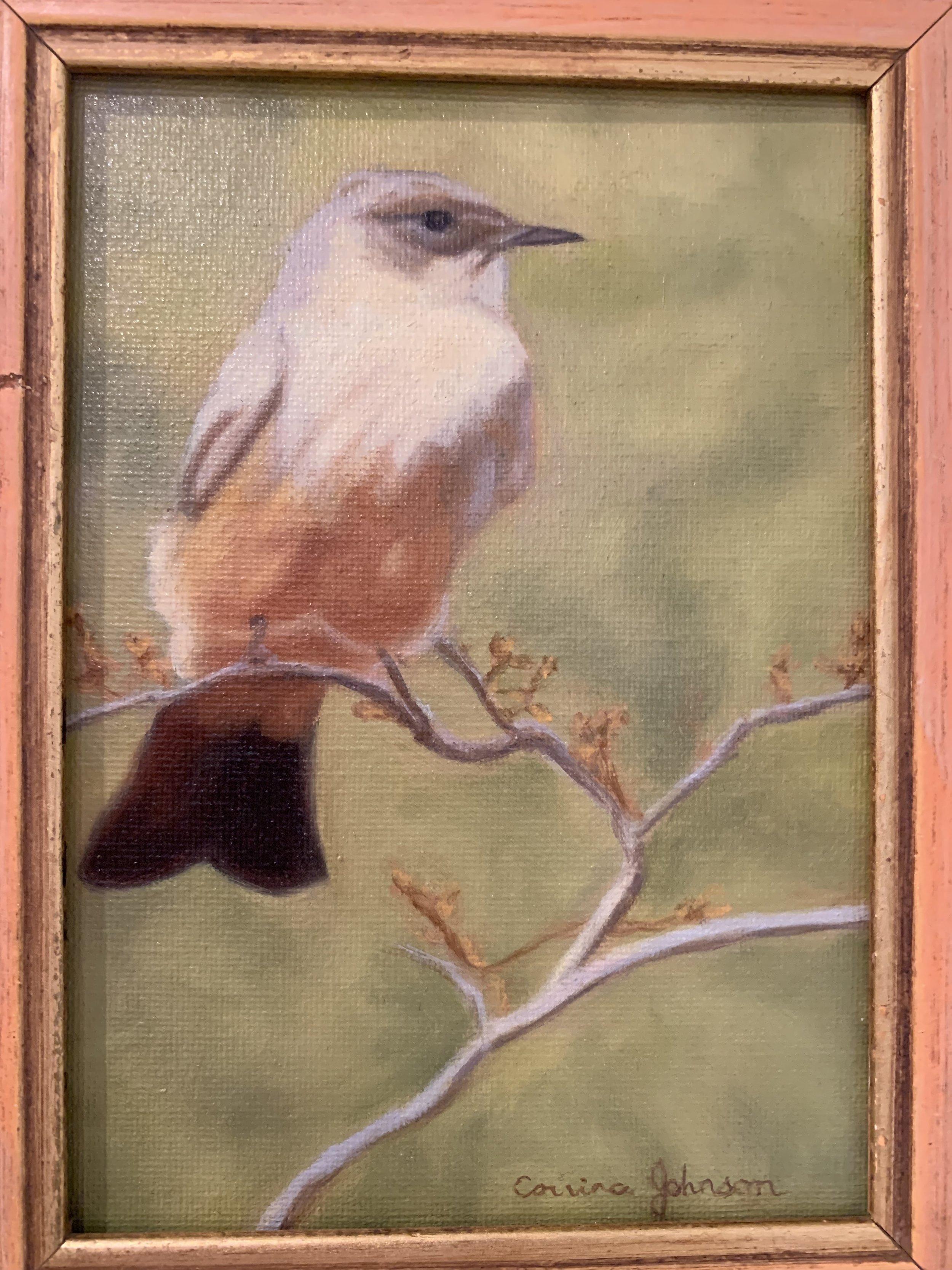 Corrina Johnson -Little yellow bird.jpeg