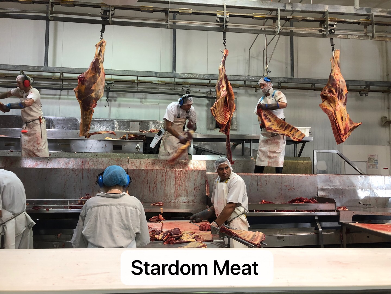 Stardom Meat Workshop