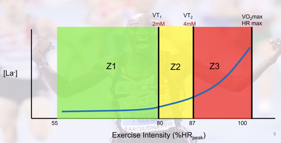 Image presented by Stephen Seiler in numerous presentations that illustrate polarised approaches to training