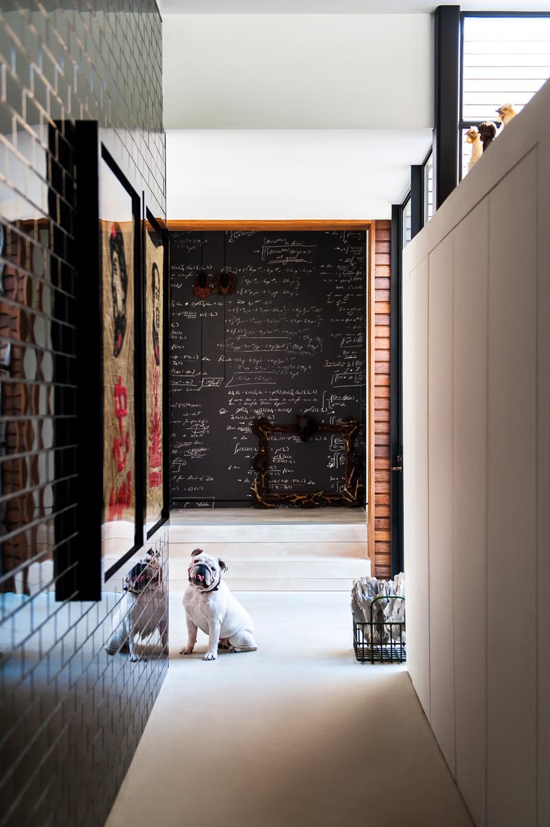 Resident Dog Blog-Nicole England-Lucy1.jpg