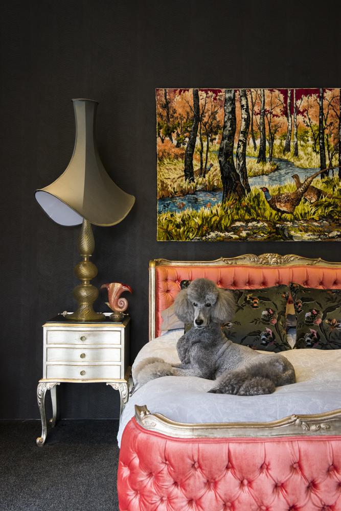 Resident Dog Blog-Nicole England-Roxy2.jpg