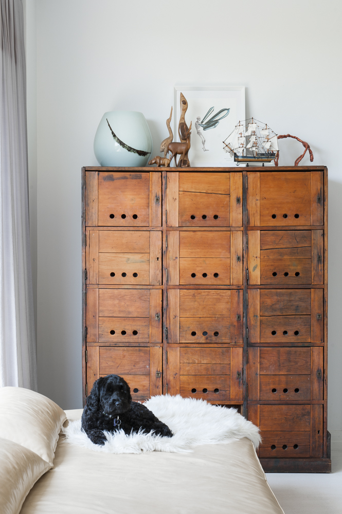 Resident Dog Blog-Nicole England-Noodle7.jpg