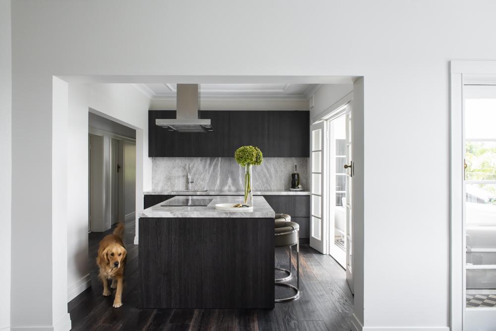 Resident Dog Blog-Nicole England-Humphrey3925.jpg