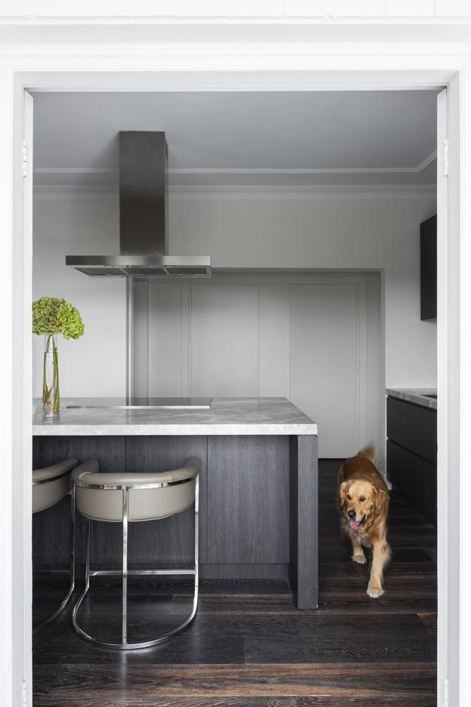 Resident Dog Blog-Nicole England-Humphrey4055.jpg