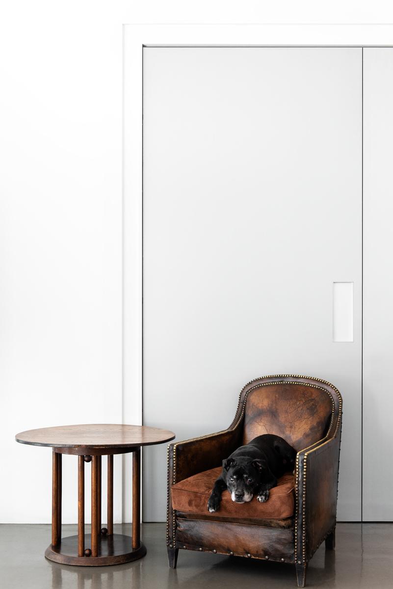 Resident Dog Blog-Nicole England-Max1230-LR.jpg