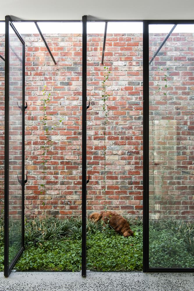 Resident Dog Blog-Nicole England-Leo1539.jpg