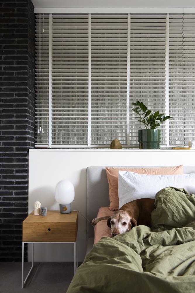 Resident Dog Blog-Nicole England-Indiana3484.jpg
