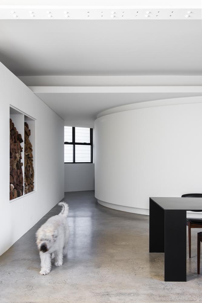 Resident Dog Blog-Nicole England-Albear4817.jpg