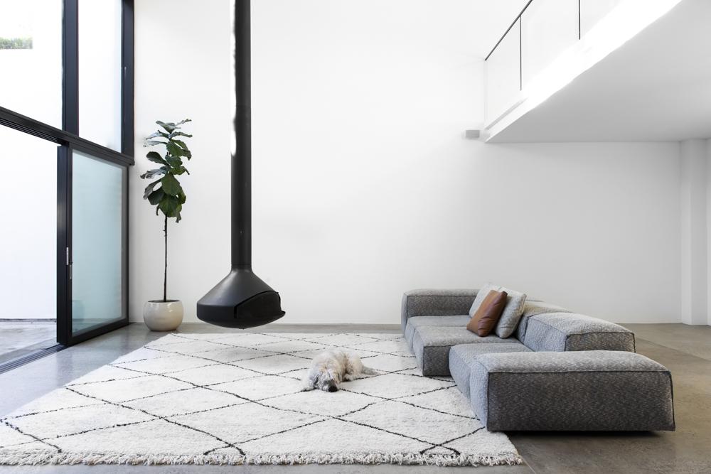 Resident Dog Blog-Nicole England-Albear4836.jpg
