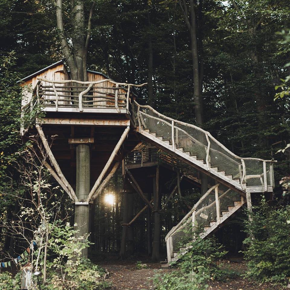 BIRCH TREEHOUSE - 4 PERSON