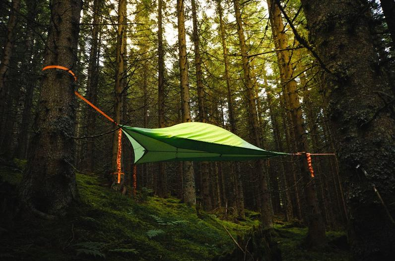 TREE TENT - MAKE A RESERVATION