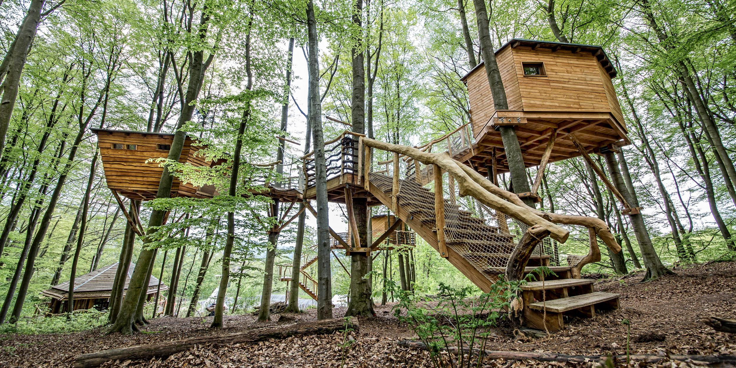 Witzenhausen, Robins Nest, Bäumhäuser©Ullrich.jpg