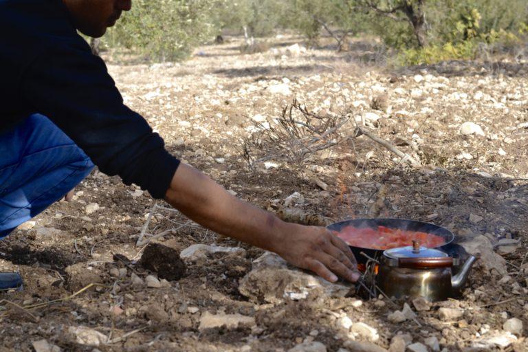 Tea among the olive trees