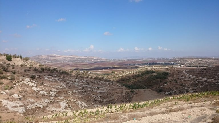 The landscape of Palestine is not easily forgotten.