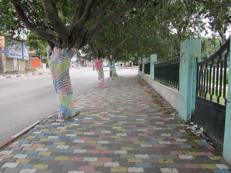 Painted trees near the park in Nablus provide a colorful path for exploring.