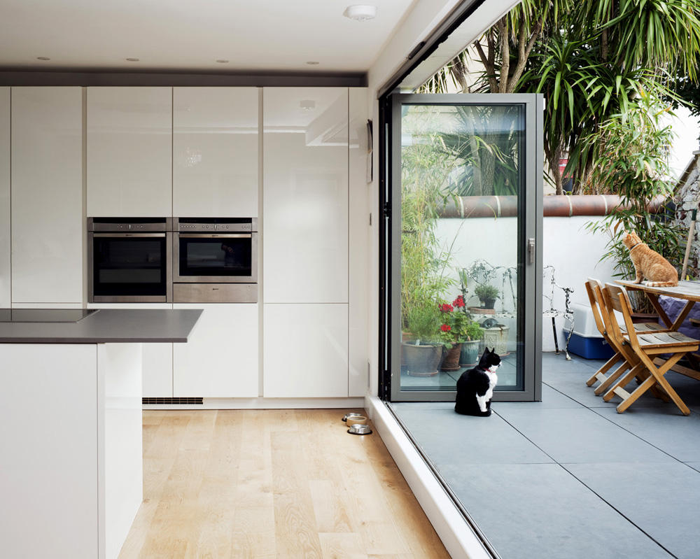 black and white kitchen and cat and contemporary courtyard