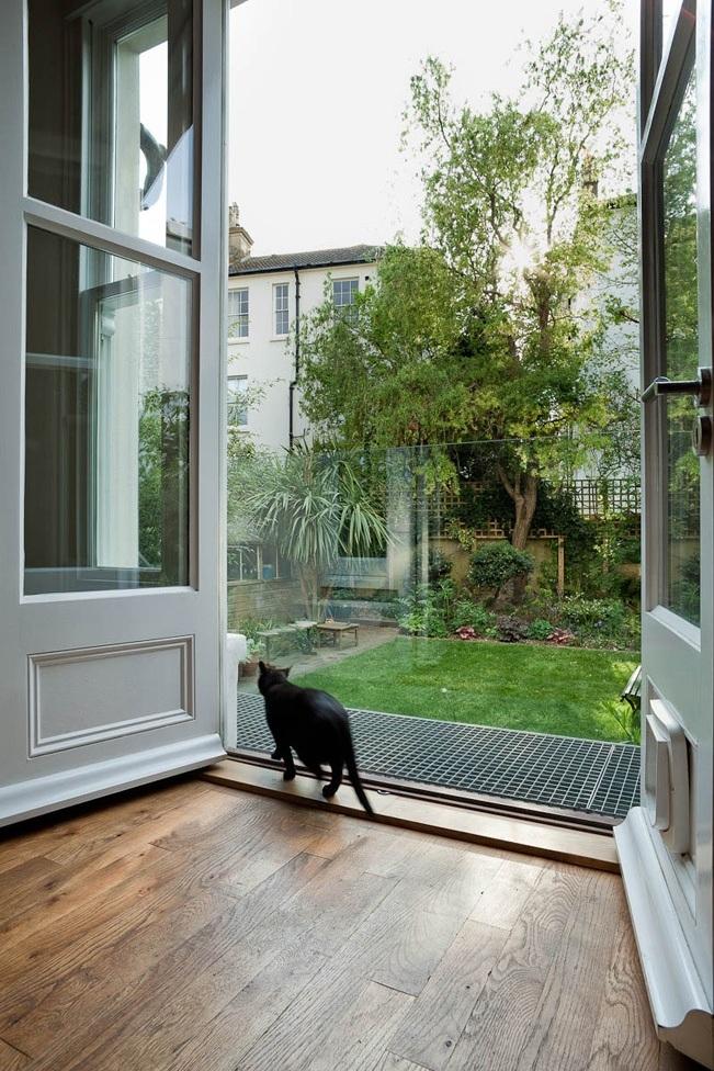 the cat enjoys the new garden access