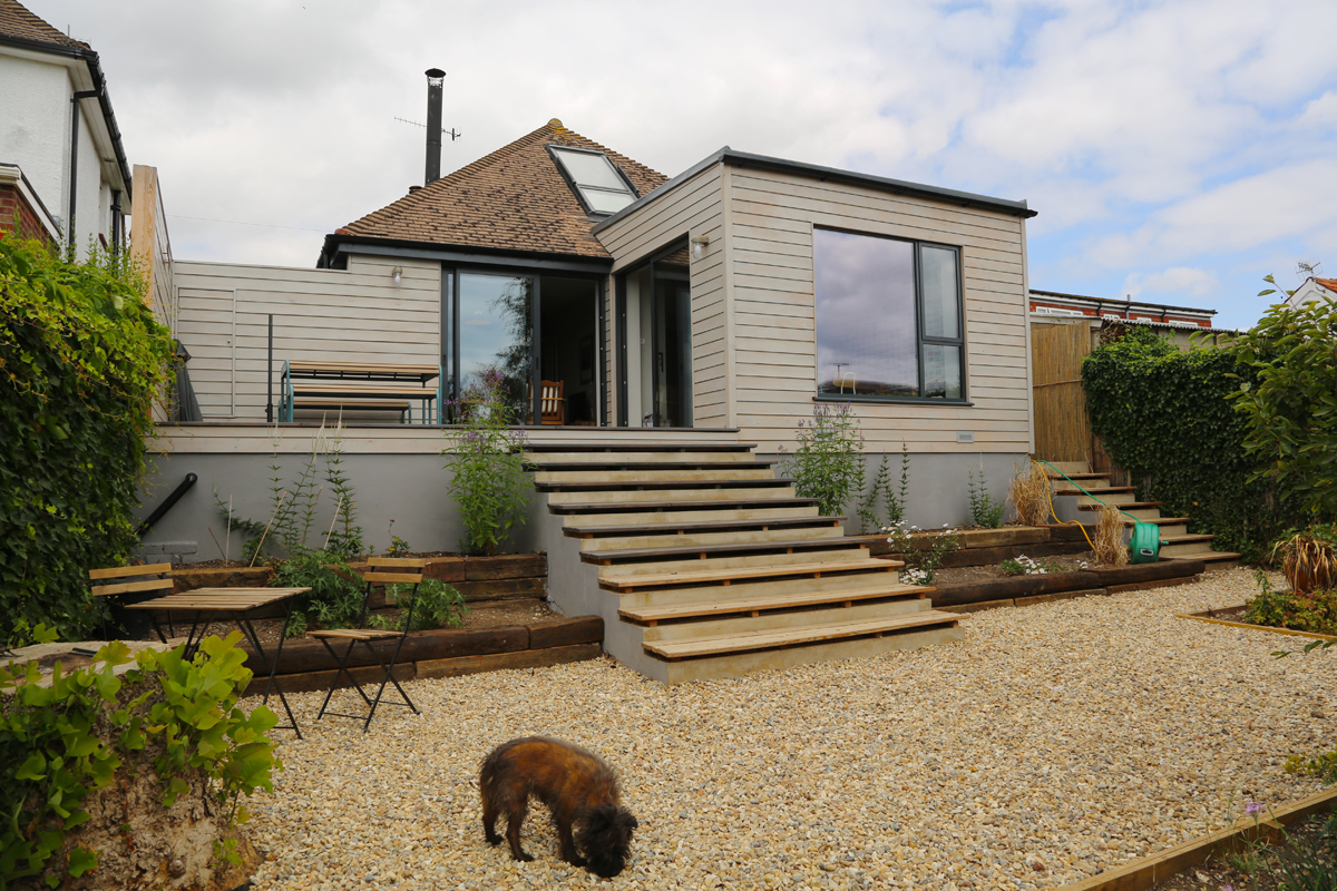 low maintenance garden and single storey extension with small dog in foregound