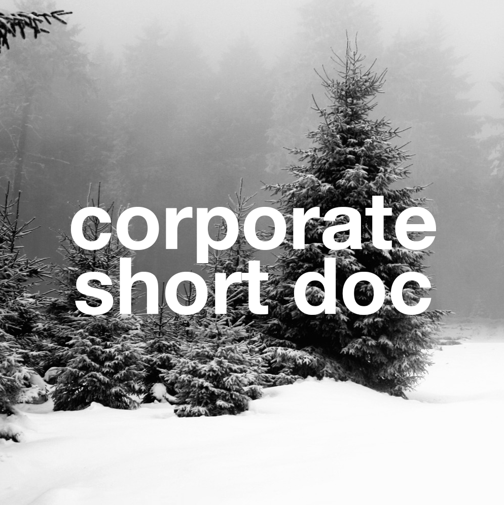 corporate_short_doc.png