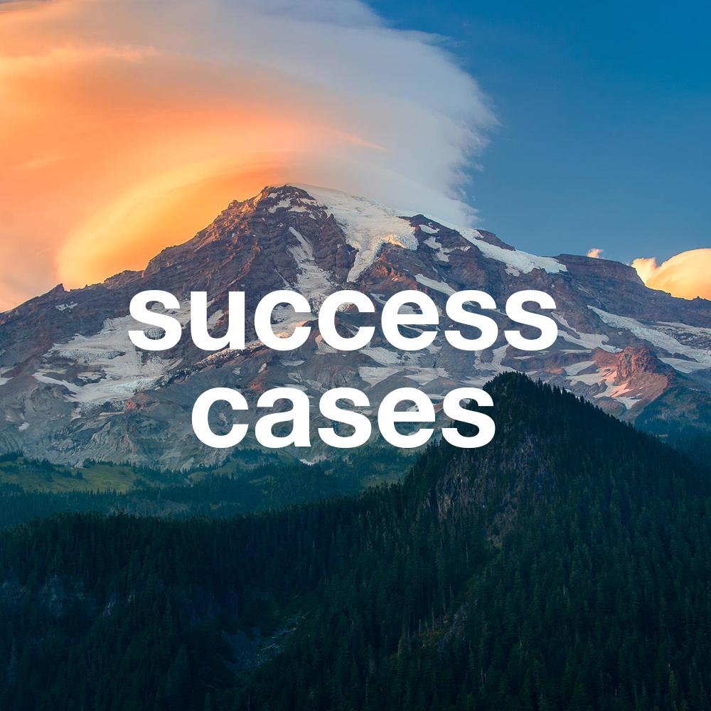 SUCCESS_CASES.png