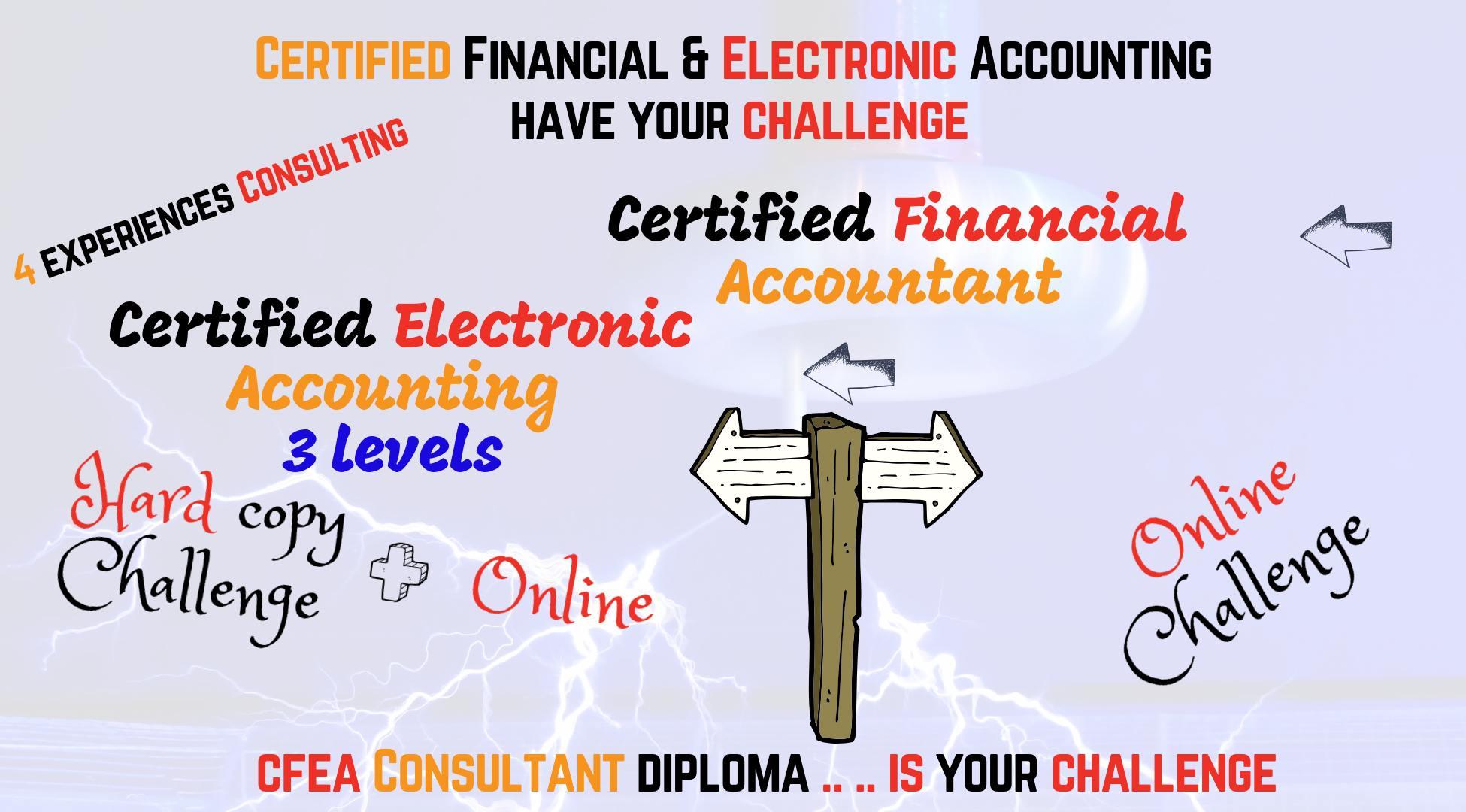 الدبلوم المهنى فى المحاسبه الماليه و الاليكترونيه