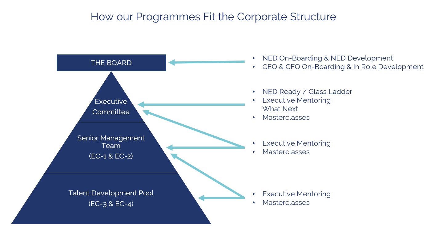 Bird Board and Executive Mentoring table of corportate structure.PNG