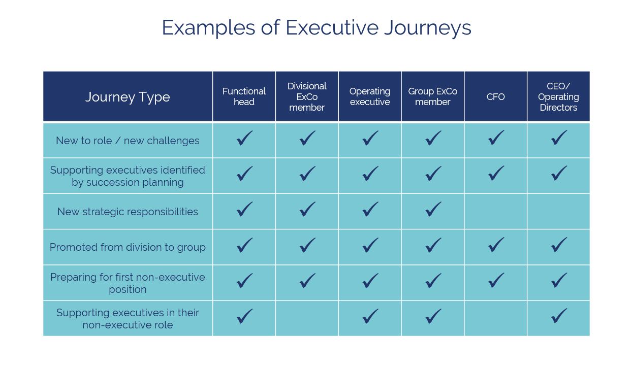 Bird Board and Executive Mentoring table of executive journeys.PNG